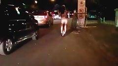 ladyboy escorts