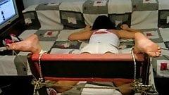 Ametaeur Torture (1)