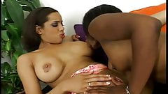 Ebony lesbian hotties are in the house