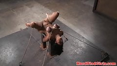 Big tit asian bdsm sub hog tied by black dom