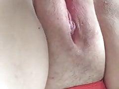 Plump Pussy
