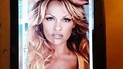 Pamela Anderson - Cum Tribute 1