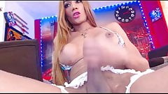 Solo webcam tranny unleashes HUGE load