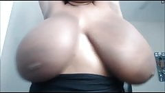 Huge Delicious Boobs Pt.2