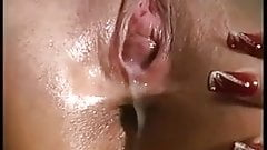 Close up of cream pie