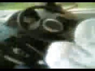 Video bokep online malay- tudung gen2 3gp