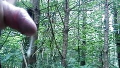 Public Big Cum in Forest