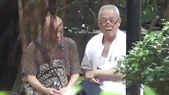 asiaticos en el parque