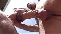 ROCCO STEELE-HOT SUMMER FUCKED