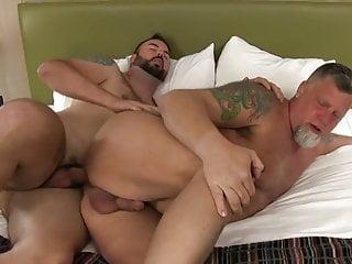 Young bear fucks daddy bear