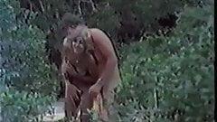 Die Buschficker