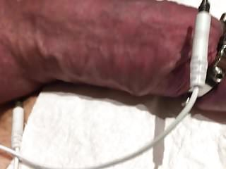Subject S's cock taking its first ever estim torture