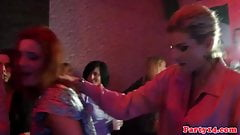 Party amateur cocksucking dick at party