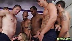 TS Karina Abelha got gangbanged by 11 cocks