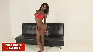 Ebony shemale beauty cums after jerking solo