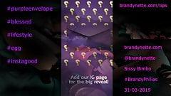 Brandynettes Investigation of Purple Envelope