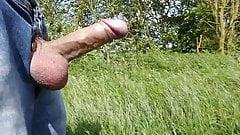 Wanking shaved uncut cock balls in jeans public field cum