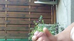 Petite branlette au jardin..