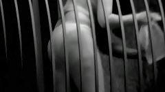 Candid & Voyeur Videos #18