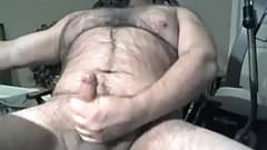 Hairy chubby bear cumming on cam