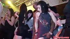 Real euro amateur enjoying dick as she gives head