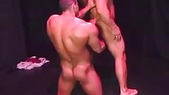 Roger Danik - Muscle worship