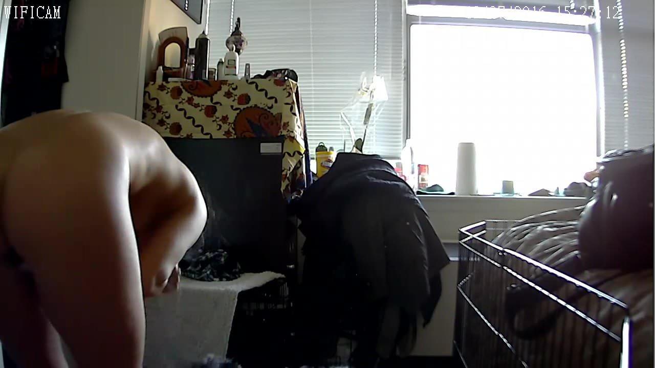 Free iphone hidden camera porn adult gallery