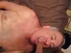 Daddy Loves To Suck