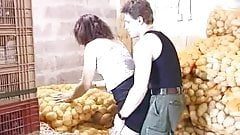 Polvo entre hortalizas