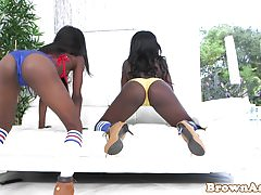 Black bigass beauty railed doggystyle in trio
