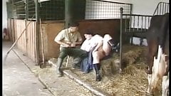 A la ferme german p3