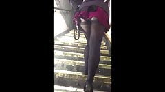 Public Voyeur Teen in Black Pantyhose Upskirt