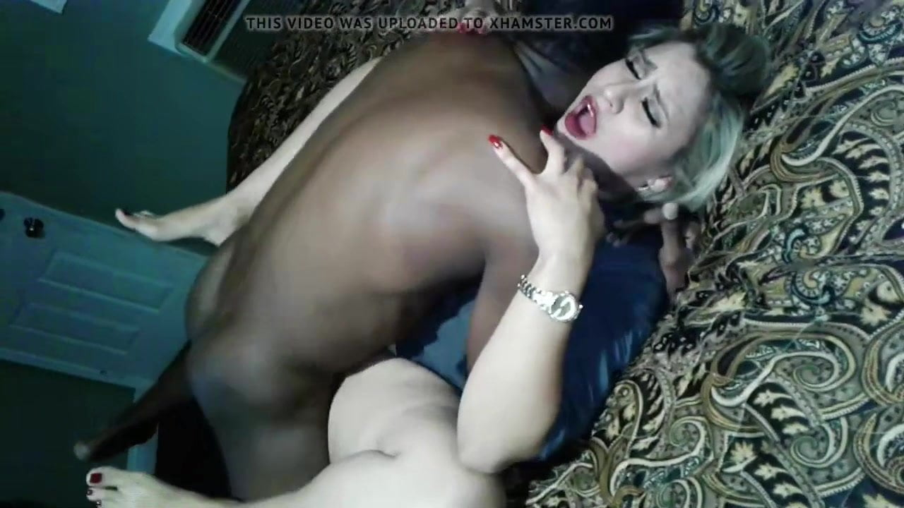 Arab sex hamster
