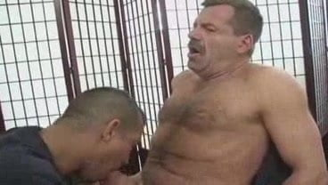 Gay Coach Porn