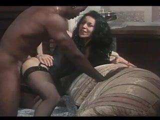 galeria North Peter porno filmy sex bondage xxx