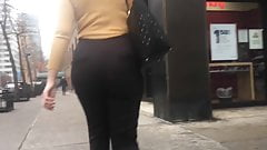 SLIM THICKEMS PAWG