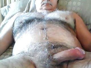 Hot polar bear 100918