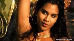Dark Beauty Dancer So Exotic