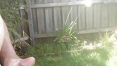 Garden Cum