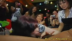 Dirty minded hotties service strippers rock solid cock