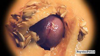 Defloration. PsychoPenis busts her melon