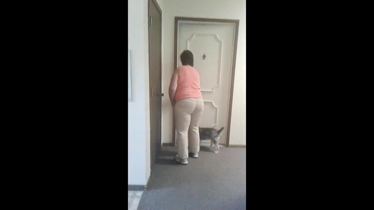 Пожилые супруги скрытой камерой видео онлайн