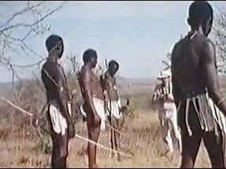 African Enormous Penises Real Safari