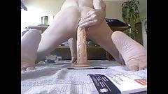 tawny on a 14 inch dildo