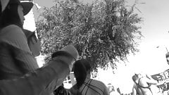 Folsom Street Fair 7