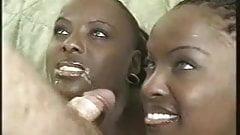 Schwarze Mädchen tun weißen Kerl ffm — foto 6