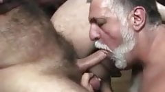 sweet nipple muscle bear daddy sucked by handsome mustache
