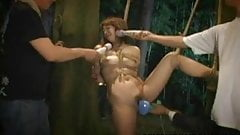 Hanging from a tree Asian babe gets vibed