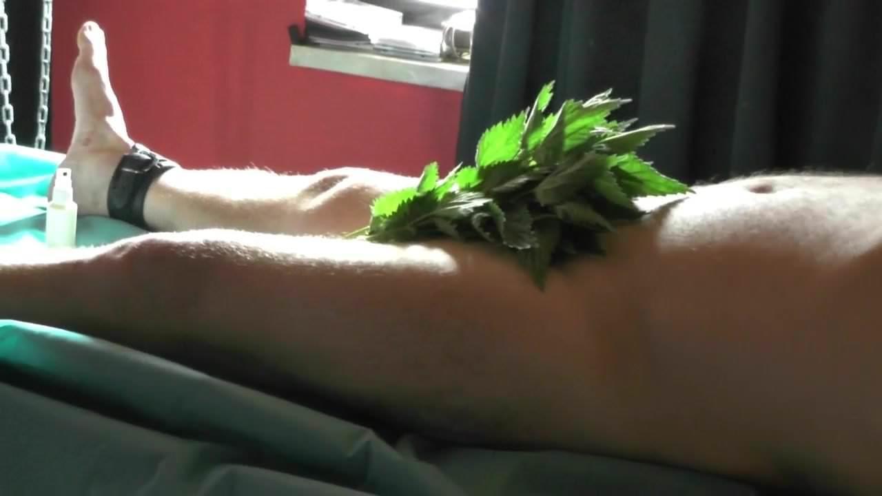 brennessel sex