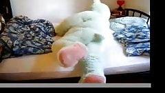Trapped in teddybear